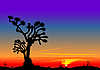 Vector clipart: beautiful bright sunset in the desert