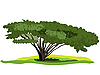 Vector clipart: spreading tree