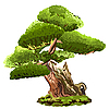Vector clipart: pine