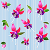 Background with flower fuchsia | Stock Vector Graphics