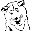 Vector clipart: Akita Inu Japanese Dog