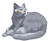 Vector clipart: shorthair cat lies and looks