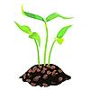 Векторный клипарт: зеленые ростки в почве