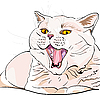 Vector clipart: shorthair cat screaming meow