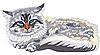 Сибирская кошка | Векторный клипарт
