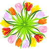 Vector clipart: circle of colorful tulips