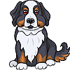 Vector clipart: cute Bernese Mountain dog puppy smiles