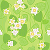 seamless pattern of white lotus flowers