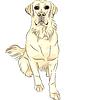 Vector clipart: color sketch dog breed white labrador retrievers sitting