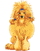 Векторный клипарт: Цвет Эскиз собаки породы красного пуделя