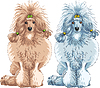 Vector clipart: dog Poodle breed sitting