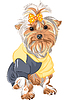 Vector clipart: pedigreed dog Yorkshire terrier sitting