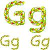 Векторный клипарт: шрифт письма G из цветка тюльпана