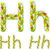Векторный клипарт: шрифтом буквы Н из цветка тюльпана