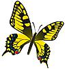 Векторный клипарт: Бабочка