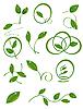 Photo 300 DPI: set of green leaves