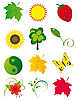 Vector clipart: Collection of elements of nature