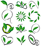 Vector clipart: Collection of leaves for design
