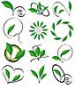 Векторный клипарт: Коллекция листьев для дизайна
