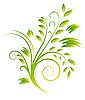 Векторный клипарт: Аннотация букет зеленых кудрей. Векторная иллюстрация