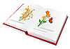 Vector clipart: book with color pictures