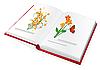 Векторный клипарт: Книга с цветными картинками