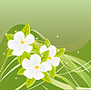 Vector clipart: Abstract green background with magnolias