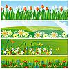 Векторный клипарт: Коллекция баннеров с цветами