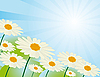 Vector clipart: Chamomile flowers against the sky