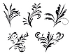 Vector clipart: Collection of decorative elements for design
