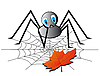 Vector clipart: A lonely spider on the web