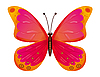 Vector clipart: Butterfly isolated. Vector