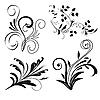 Set von floralen Design-Elementen