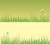 Vector clipart: Field of grass