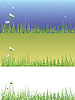 Векторный клипарт: Поле травы