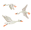 Flying geese | Stock Illustration
