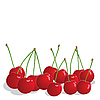 Vector clipart: Cherries