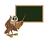 Owl-teacher stands at the blackboard