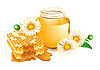 Vector clipart: camomiles honey
