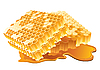 Honeycomb | Stock Vector Graphics