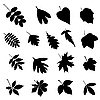 Leaf silhouettes | Stock Vector Graphics