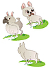 Vector clipart: Three drawings of French Bulldogs