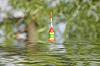 Photo 300 DPI: Fishing bobber