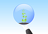Vector clipart: Eco sphere in hand