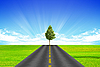Road and tree | Stock Foto