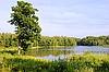 湖 | 免版税照片