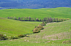 Italy. Val D'Orcia valley. Tuscany landscape | Stock Foto