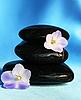 温泉石头与花 | 免版税照片