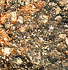 Soil and stone after rain | Stock Foto