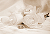 Wedding rings and roses | Stock Foto